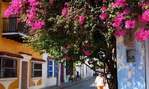 Cartagena, thành phố của sắc màu