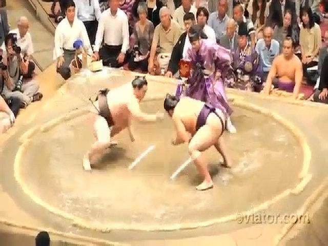 Sumo, môn võ truyền thống của Nhật Bản