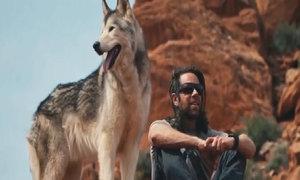 Chuyến phượt cùng chó lai sói