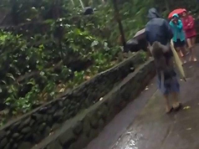Khỉ Bali tụt quần du khách để cướp chuối