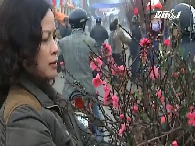 Wifi miễn phí phủ sóng các chợ hoa, đường hoa Tết