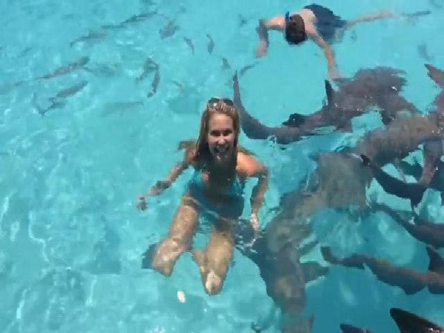Tạo dáng nóng bỏng giữa đàn cá mập, nữ phượt thủ bị cắn tay/ Nữ phượt thủ sốc vì bị cắn khi tạo dáng