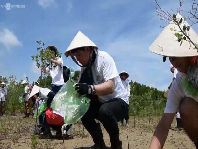 Tour du lịch trồng cây ở Cần Giờ thu hút du khách Nhật Bản