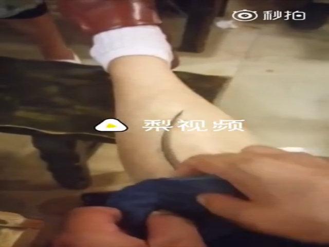 Thực khách bị chuột chui vào ống quần ở nhà hàng Trung Quốc