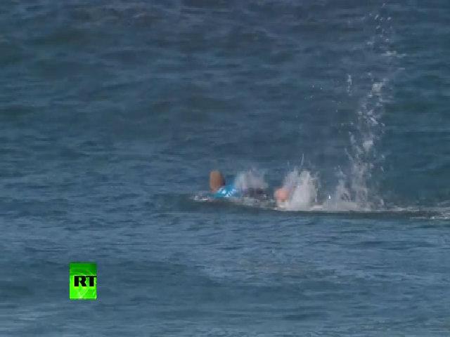 Khách Anh thoát chết nhờ đấm liên tiếp vào mặt cá mập