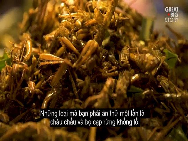 Những món ăn từ côn trùng hút khách ở Bangkok