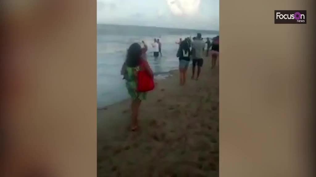 Bơi ở vùng nguy hiểm, chàng trai bị cá mập cắn đứt 'của quý'