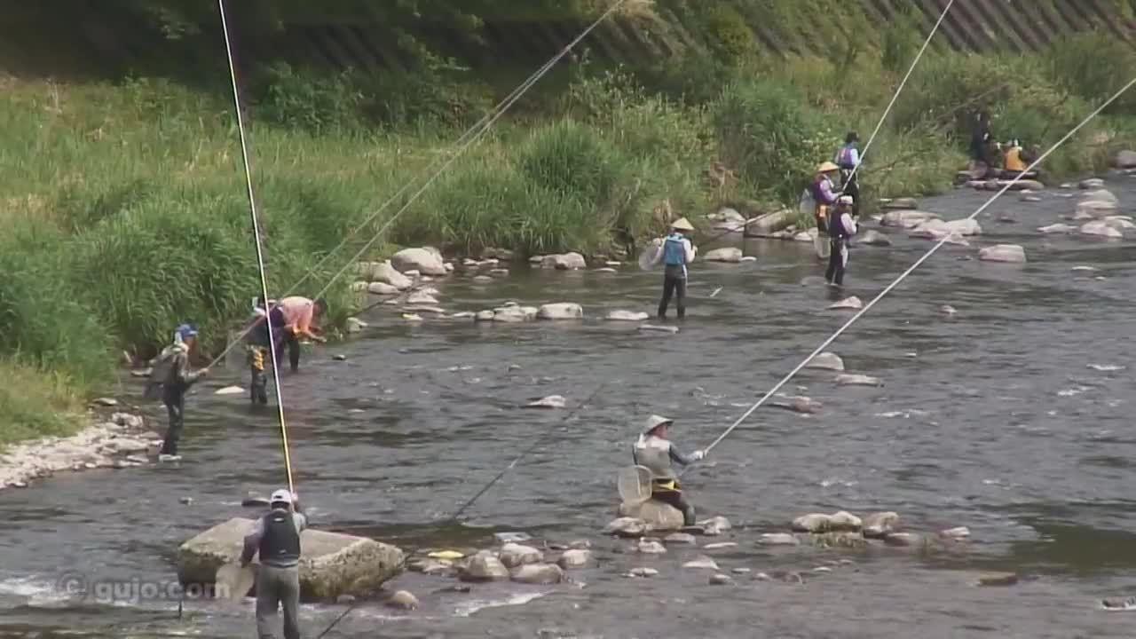 Thú câu và nướng cá suối vào mùa hè ở Nhật Bản