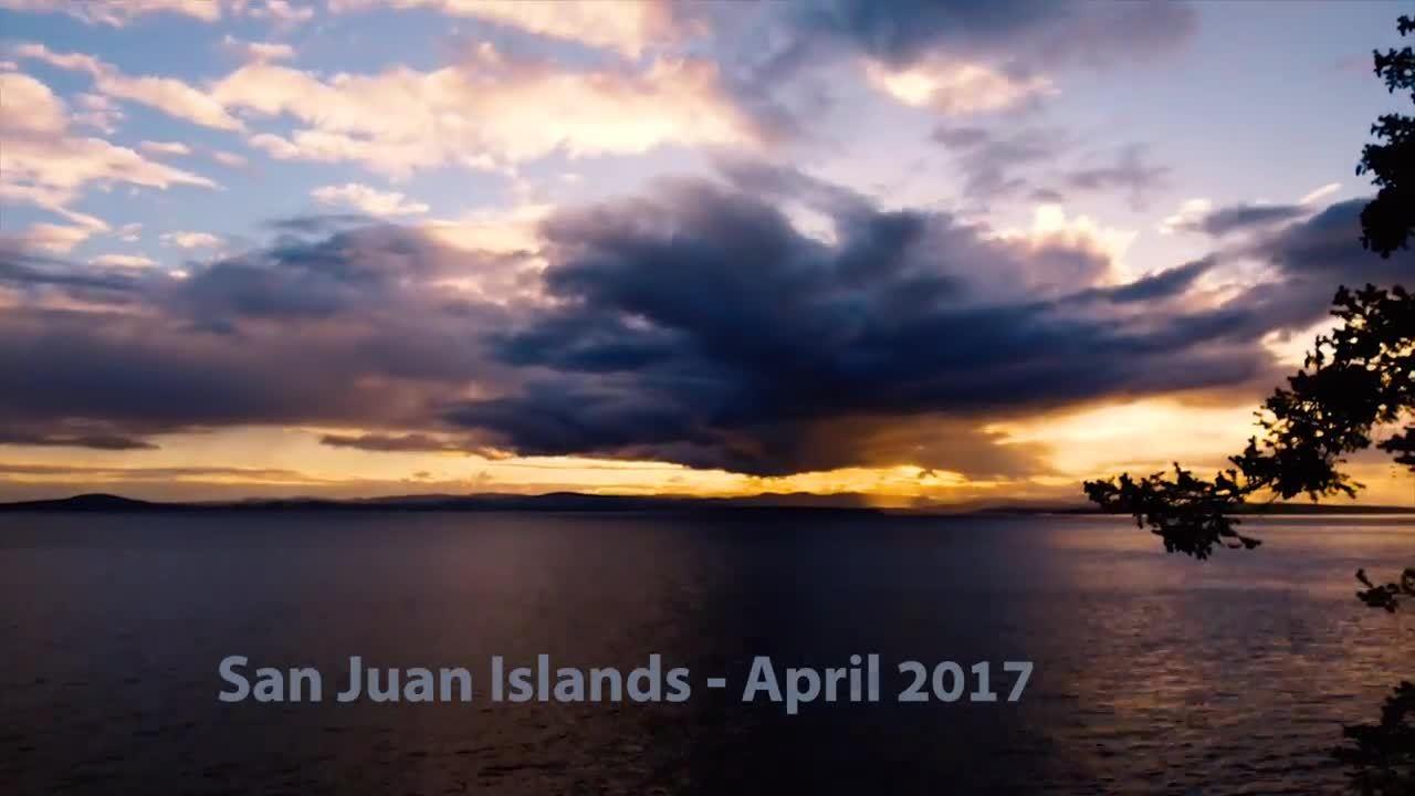 Hòn đảo Mỹ suýt để mất vì một con lợn và vài củ khoai
