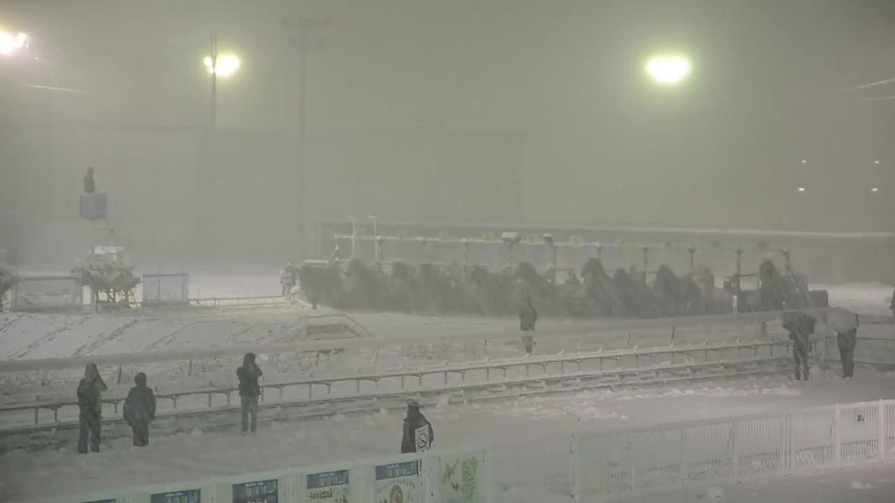 Cuộc đua ngựa ngược đời ở Nhật Bản