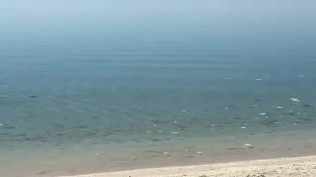 Bãi biển kỳ lạ không có cát ở Australia