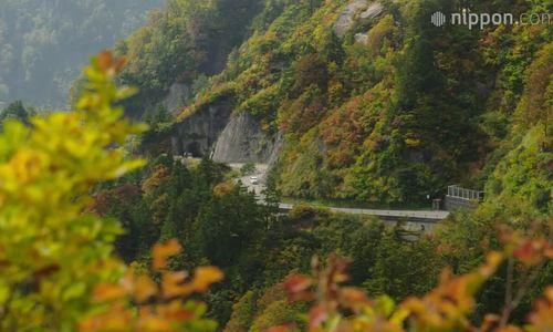 Cung đường mùa thu xe chỉ chạy ban ngày ở Nhật