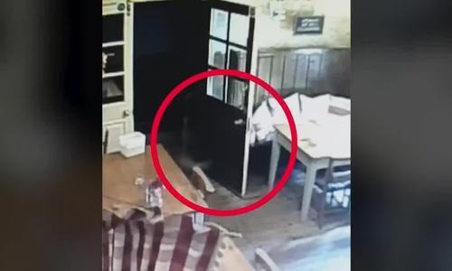 Chiếc bóng bí ẩn trong quán rượu