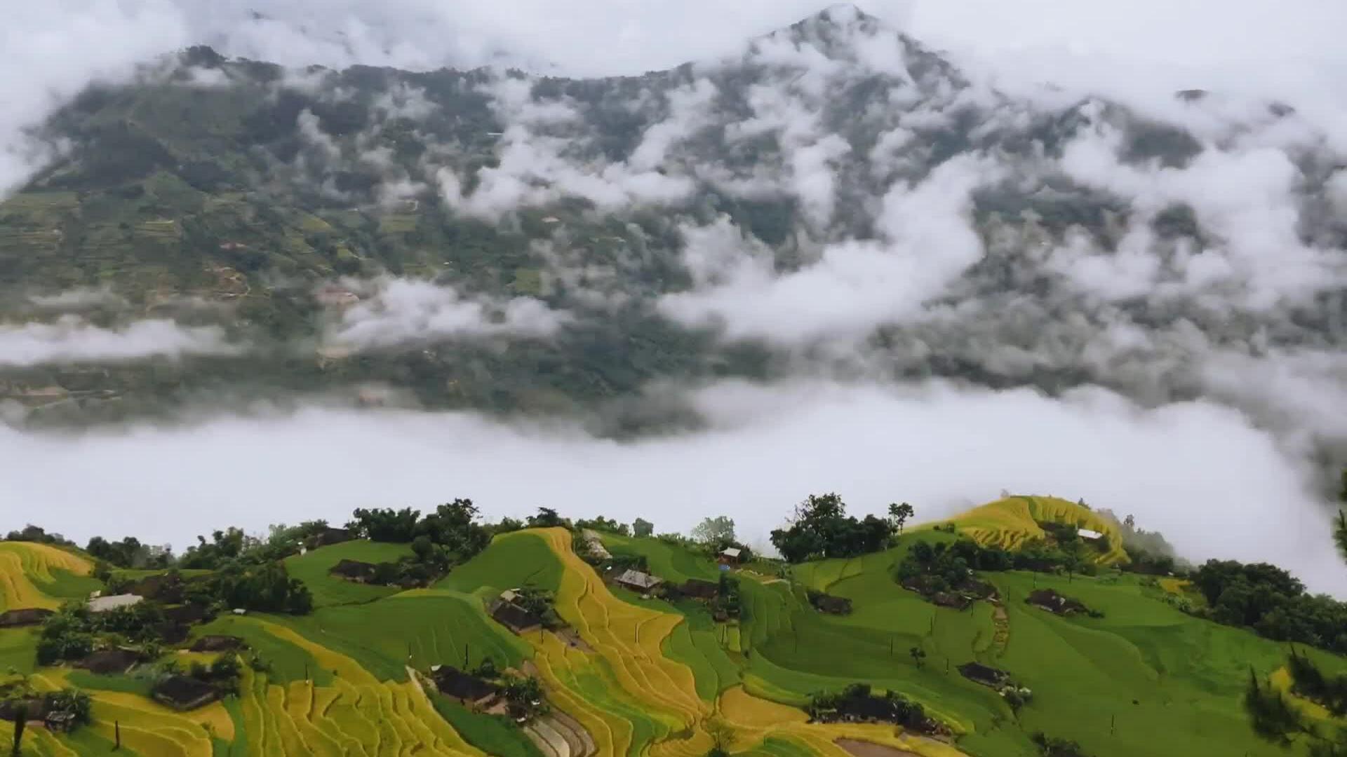 5 homestay cho bạn ngắm mùa vàng Hà Giang