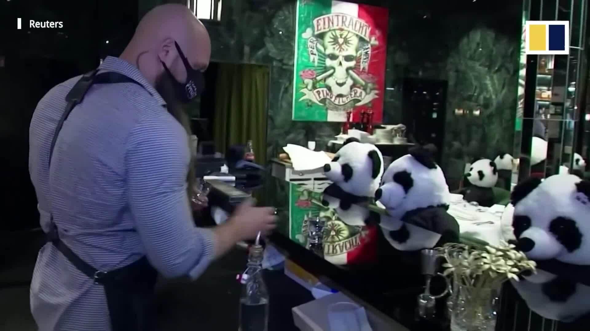 Nhà hàng với thực khách là 'gấu trúc'