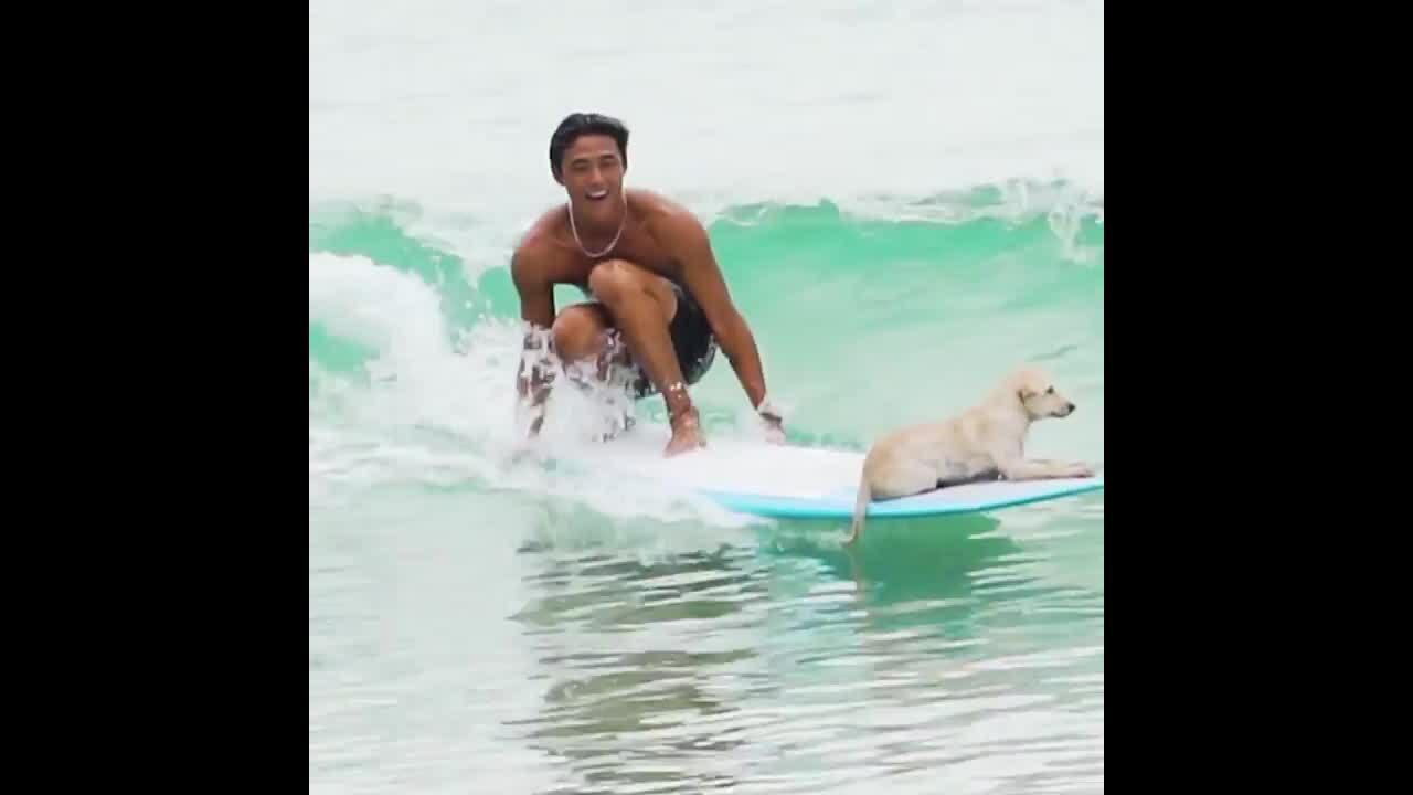 Chàng trai dựng 'chòi' dạy lướt sóng ở Nha Trang