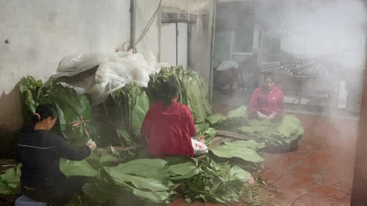 Làng nghề nơi người dân gói bánh chưng trong 30 giây