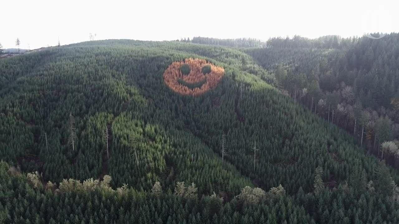 Mặt cười chỉ xuất hiện vào mùa thu
