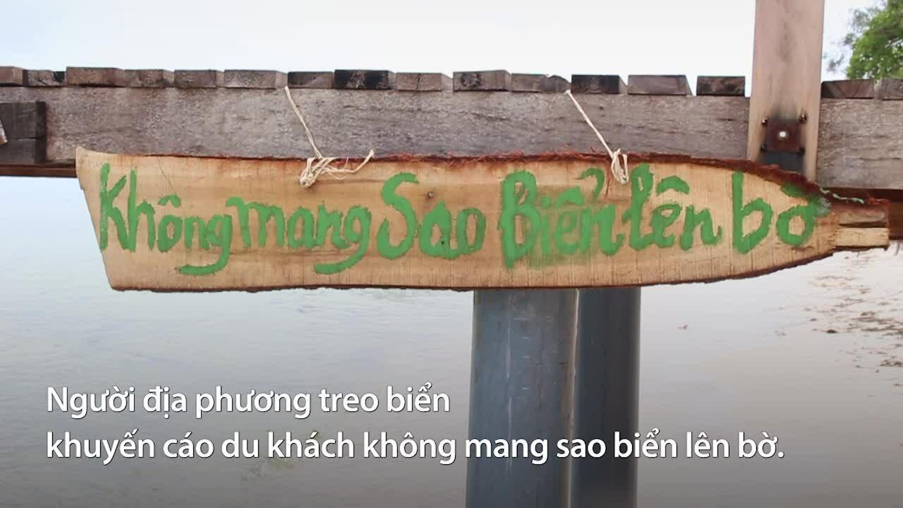 Vương quốc sao biển trên đảo ngọc Phú Quốc
