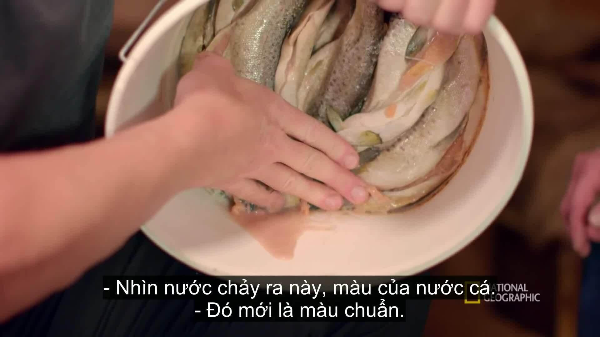 Gordon Ramsay ăn cá hồi muối sống bốc mùi