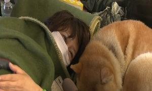 Search for survivors after Japan quakes