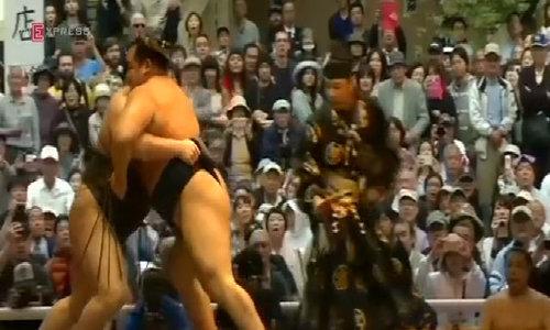 Japan's sumo wrestlers mark spring festival in Tokyo