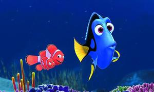 Sales going swimmingly for Finding Dory at box office