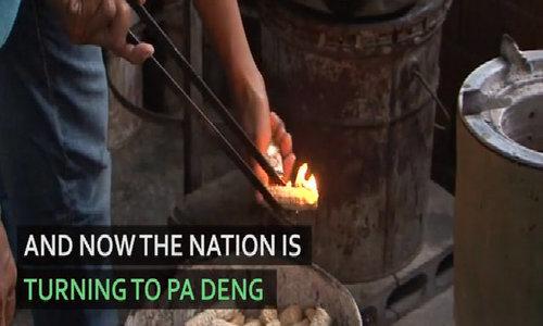 Thai village using poop to power homes