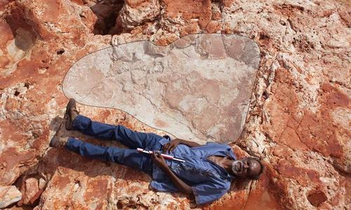Dinosaur footprint found in Australia may be world's largest