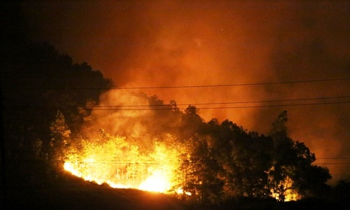 Historic wildfire wipes out massive area in Hanoi forest