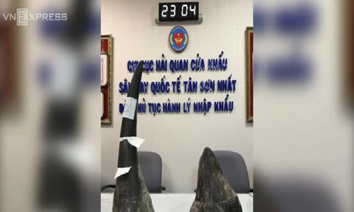 African rhino horn shipment seized at Saigon airport
