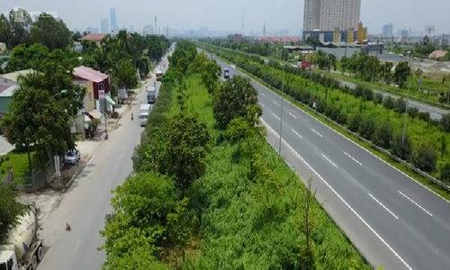 How the green, grassy median strips in Hanoi became a divisive political saga