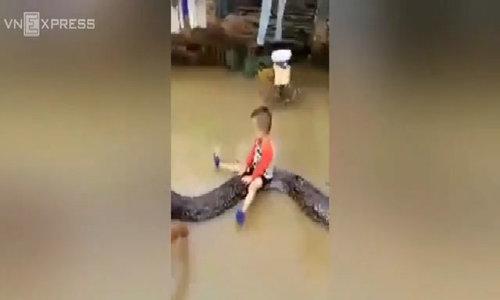 Giggling boy rides 16-feet python in Vietnam
