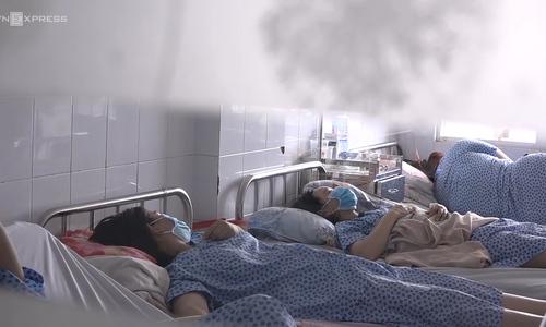 Swine flu in Ho Chi Minh City under control