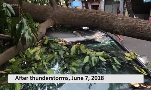 Thunderstorms knock down trees, send Saigon traffic into chaos