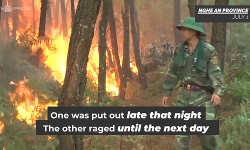 Central Vietnam battles four forest fires