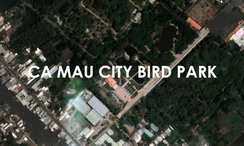 Visit Vietnam's man-made bird park in the middle of a city