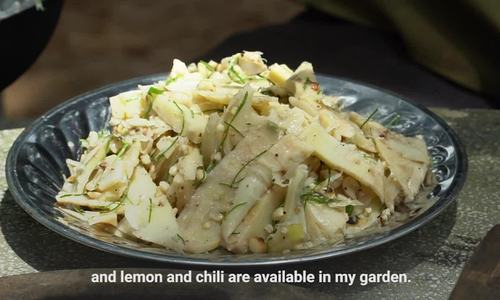 The magnificent bamboo shoot salad of the forest