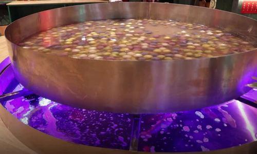 Eatery boils up a storm with sweet dessert soup balanced atop an aquarium
