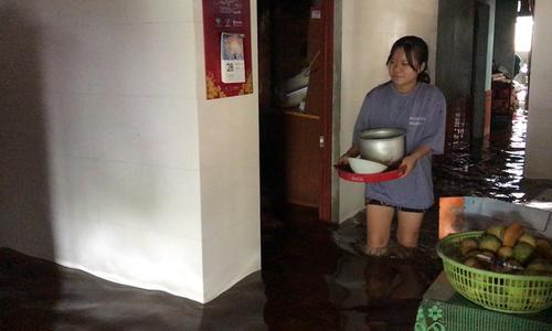 Flood zone communities adapt to aquatic life