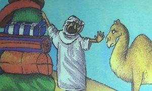 'Giấc mơ của lạc đà Cairo'