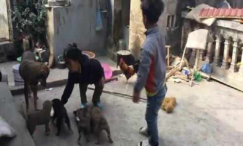 3 người lùn ở Hưng Yên