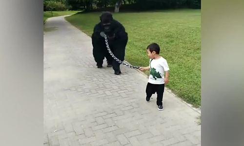Cậu bé dắt bố 'khỉ đột' đi dạo