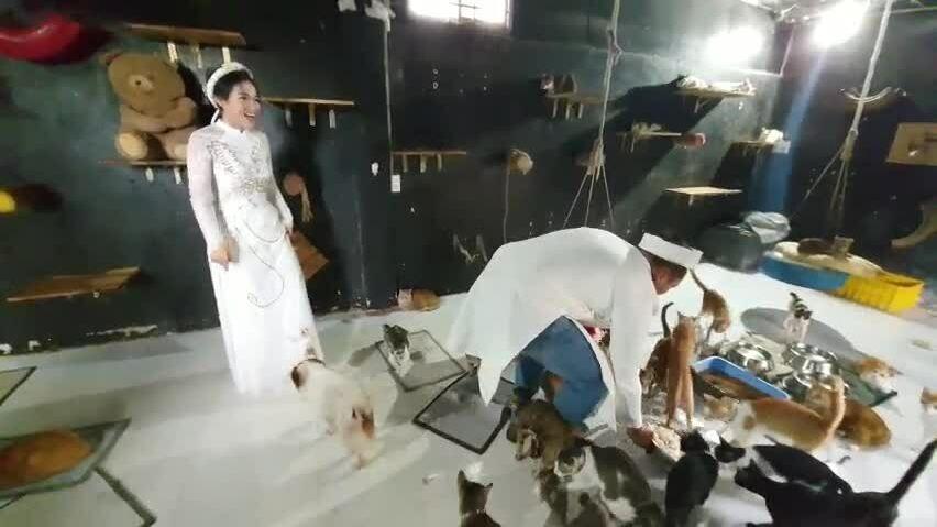 Kết hậu của cặp vợ chồng hoãn cưới để cứu chó mèo
