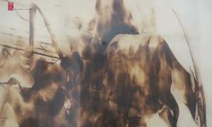Họa sĩ Trung Nghĩa ra mắt buổi triển lãm 'Tiếng gọi núi rừng'