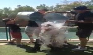 Victoria Beckham dội nước đá