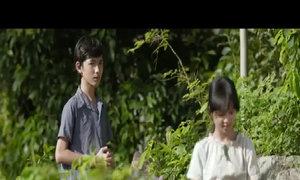 Trailer thứ hai phim 'Tôi thấy hoa vàng trên cỏ xanh'