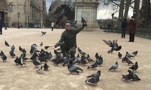 Đàm Vĩnh Hưng chơi đùa cùng chim bồ câu