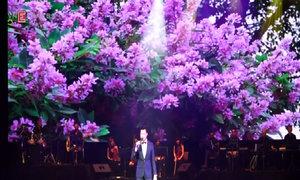 Quang Dũng hát 'Vĩnh biệt mùa hè' và 'Hoa tím ngoài sân'