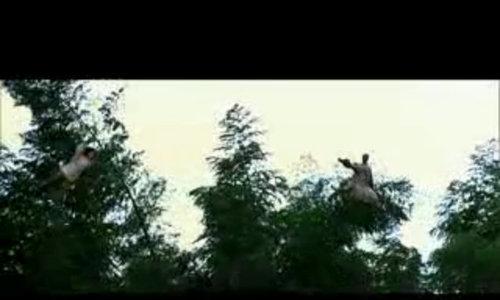 Châu Nhuận Phát, Chương Tử Di đấu kiếm trên ngọn cây